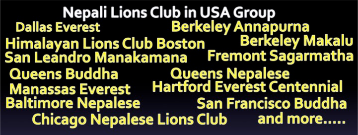 banner-lions-group
